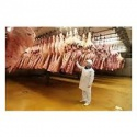 beef carcass - grade a - halal - product's photo