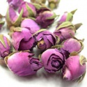pink rose bud, eu standard - product's photo