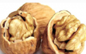walnuts bluk walnuts kernels cheap price - product's photo