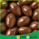 artificial chocolate almond milk compound chocolate - product's photo