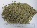 chinese yunnan green coffee beans,screen 13-16 - product's photo