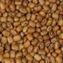 indian cowgram beans - product's photo