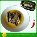 season sardine wholesale canned sardine in hot oil - product's photo