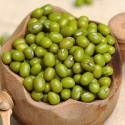 long shape mung bean with cheapest price - product's photo