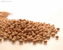 fine quality soybeans and oils - product's photo