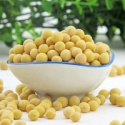 types of edamame bulk dried soybean large type - product's photo