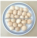 mushroom farm - product's photo