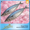 fresh fish frozen mackerel - product's photo