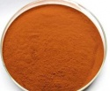 instant black tea extract powder - product's photo