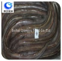 fish product type and frozen style conger eel - product's photo