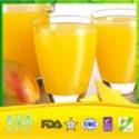 mango puree concentrate - product's photo