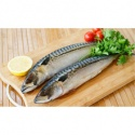frozen fish mackerel - product's photo