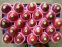 fresh red sweet chinese huaniu apples - product's photo