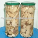 2014 best quality canned marinated oyster mushroom for sale - product's photo