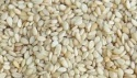 white sesame seed - product's photo