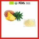 organic freeze dried pineapple/freeze dried fruit powder with good pri - product's photo