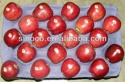 fresh apple fruit for sale - product's photo