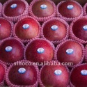 fresh red apple fruit (huaniu) - product's photo