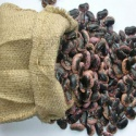 new crop black speckled kidney beans - product's photo