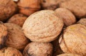 walnuts, walnuts without shell and inshell, walnut kernel - product's photo
