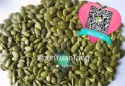 china pumpkin seeds kernel - shine skin aa/a - product's photo