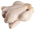 whole frozen chicken for export - product's photo