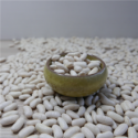 new crop beans/white beans - product's photo