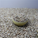 hulled seed shelled organic hemp seeds wholesale - product's photo