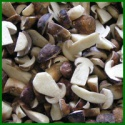 factory price brown frozen boletus edulis quarter slice - product's photo