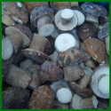 wholesale price iqf raw wild boletus edulis whole - product's photo