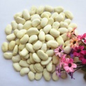 new crop white kidney beans export in china - product's photo