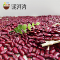 2016 crop small / dark red kidney beans  - product's photo