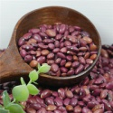 small red kidney bean 2016 crop good price high quality - product's photo