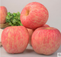 good brand farm fresh fruits of fuji apple for wholesales - product's photo