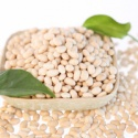 white kidney bean on sale - product's photo