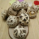 dried white flower shiitake mushroom whole - product's photo