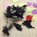 washed white back dried black fungus mushroom - product's photo