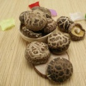 dried tea flower shiitake mushroom whole - product's photo