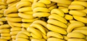 fresh bananas fruit - product's photo